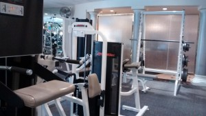 Free weight squat machine